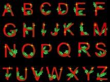 Alfabeto do azevinho Imagem de Stock