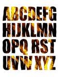 Alfabeto dorato Immagini Stock