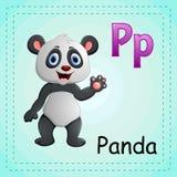 Alfabeto dos animais: P é para a panda Fotografia de Stock