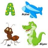 Alfabeto dos desenhos animados A Fotografia de Stock Royalty Free