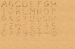 Alfabeto e números da concha do mar Fotografia de Stock Royalty Free