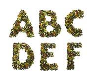 Alfabeto e numeri del pepe Immagini Stock Libere da Diritti