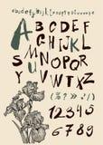 Alfabeto e numeri disegnati a mano dentro Fotografie Stock Libere da Diritti