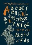Alfabeto e numeri disegnati a mano dentro Fotografia Stock