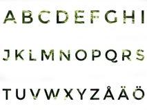 Alfabeto fijado con las letras escandinavas Imágenes de archivo libres de regalías