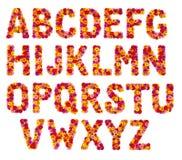 Alfabeto floreale isolato su bianco Immagini Stock