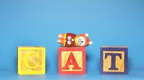 Alfabeto 'gato' Fotografia de Stock