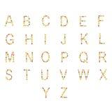 Alfabeto inglés ABC de la comida seca del gato y de perro, en blanco Foto de archivo libre de regalías