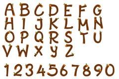 Alfabeto inglés y números ilustración del vector