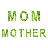 Alfabeto inglês da MAMÃ e da MÃE feito da grama verde no fundo branco Fotos de Stock Royalty Free