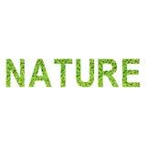 Alfabeto inglês da NATUREZA feito da grama verde no fundo branco Foto de Stock