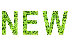 Alfabeto inglês de NOVO feito da grama verde no fundo branco para isolado Fotos de Stock