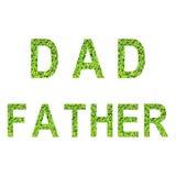 Alfabeto inglês do PAIZINHO e do PAI feitos da grama verde no fundo branco Imagem de Stock Royalty Free