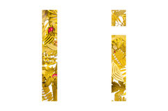 Alfabeto inglês feito das folhas secas e da grama seca no fundo branco para isolado Fotos de Stock Royalty Free