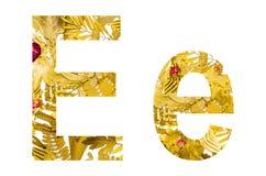 Alfabeto inglês feito das folhas secas e da grama seca no fundo branco para isolado Imagens de Stock