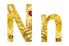 Alfabeto inglês feito das folhas secas e da grama seca no fundo branco para isolado Fotografia de Stock Royalty Free