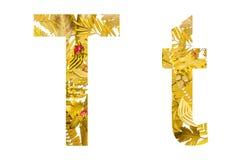 Alfabeto inglês feito das folhas secas e da grama seca no fundo branco para isolado Fotos de Stock