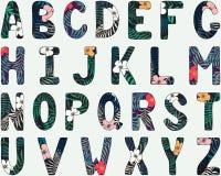 Alfabeto inglês Letras principais Fonte tropical tirada mão Imagem de Stock