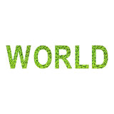 Alfabeto inglese del MONDO fatto da erba verde su fondo bianco Fotografia Stock