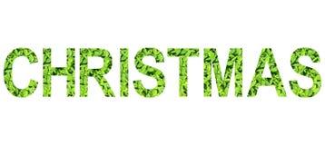 Alfabeto inglese del Natale fatto da erba verde su fondo bianco per isolato Immagini Stock Libere da Diritti
