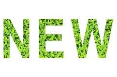 Alfabeto inglese di NUOVO fatto da erba verde su fondo bianco per isolato Fotografie Stock