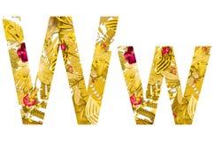 Alfabeto inglese fatto dalle foglie asciutte e dall'erba asciutta su fondo bianco per isolato Fotografia Stock Libera da Diritti