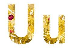 Alfabeto inglese fatto dalle foglie asciutte e dall'erba asciutta su fondo bianco per isolato Immagine Stock Libera da Diritti