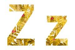 Alfabeto inglese fatto dalle foglie asciutte e dall'erba asciutta su fondo bianco per isolato Immagine Stock