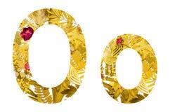Alfabeto inglese fatto dalle foglie asciutte e dall'erba asciutta su fondo bianco per isolato Immagini Stock Libere da Diritti