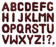 Alfabeto inglese Lettera dai fiori secchi del tè dell'ibisco su un fondo bianco Lettere per le insegne, pubblicità Immagini Stock
