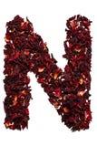 Alfabeto inglese Lettera N dai fiori secchi del tè dell'ibisco su un fondo bianco Lettere per le insegne, pubblicità Fotografie Stock Libere da Diritti