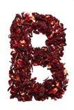 Alfabeto inglese Segni la B con lettere dai fiori secchi del tè dell'ibisco su un fondo bianco Lettere per le insegne, pubblicità Fotografie Stock Libere da Diritti
