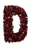 Alfabeto inglese Segni la D con lettere dai fiori secchi del tè dell'ibisco su un fondo bianco Lettere per le insegne, pubblicità Fotografie Stock Libere da Diritti