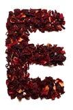 Alfabeto inglese Segni la E con lettere dai fiori secchi del tè dell'ibisco su un fondo bianco Lettere per le insegne, pubblicità Immagini Stock