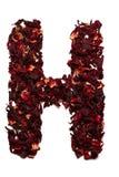 Alfabeto inglese Segni la H con lettere dai fiori secchi del tè dell'ibisco su un fondo bianco Lettere per le insegne, pubblicità Immagine Stock