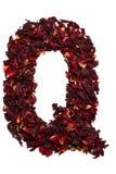 Alfabeto inglese Segni la Q con lettere dai fiori secchi del tè dell'ibisco su un fondo bianco Lettere per le insegne, pubblicità Immagine Stock