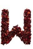 Alfabeto inglese Segni W con lettere dai fiori secchi del tè dell'ibisco su un fondo bianco Lettere per le insegne, pubblicità Fotografie Stock Libere da Diritti