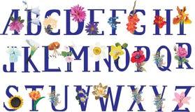 Alfabeto isolado da flor Fotos de Stock Royalty Free