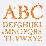Alfabeto latin do outono do vetor, consistir brilhante Fotografia de Stock Royalty Free