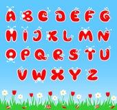 Alfabeto latino de ABC Fotografía de archivo libre de regalías