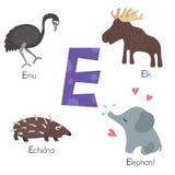 Alfabeto lindo del parque zoológico Imagen de archivo