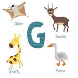 Alfabeto lindo del parque zoológico Foto de archivo libre de regalías