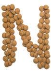 Alfabeto N de la tuerca del jengibre Imagen de archivo