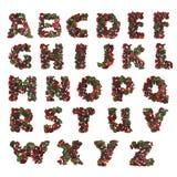 Alfabeto naturale Fotografie Stock Libere da Diritti