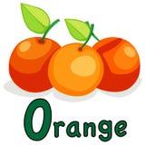 Alfabeto O per l'arancio Fotografia Stock