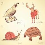 Alfabeto operato degli animali di schizzo nello stile d'annata Fotografia Stock