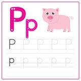 Alfabeto P de la tarjeta de la escritura Imágenes de archivo libres de regalías