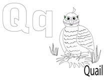 Alfabeto para miúdos, Q da coloração Imagens de Stock Royalty Free