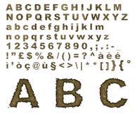 Alfabeto queimado do pergaminho ilustração do vetor