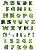 Alfabeto - textura de las hojas - verano verde Fotografía de archivo